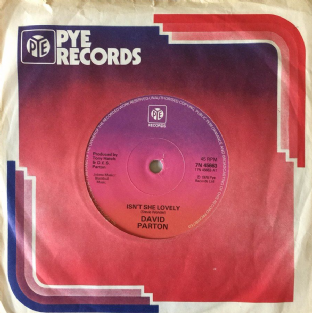"David Parton - Isn't She Lovely (7"") (VG/G)"